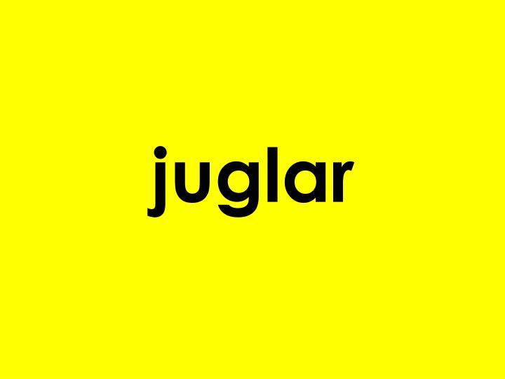 juglar
