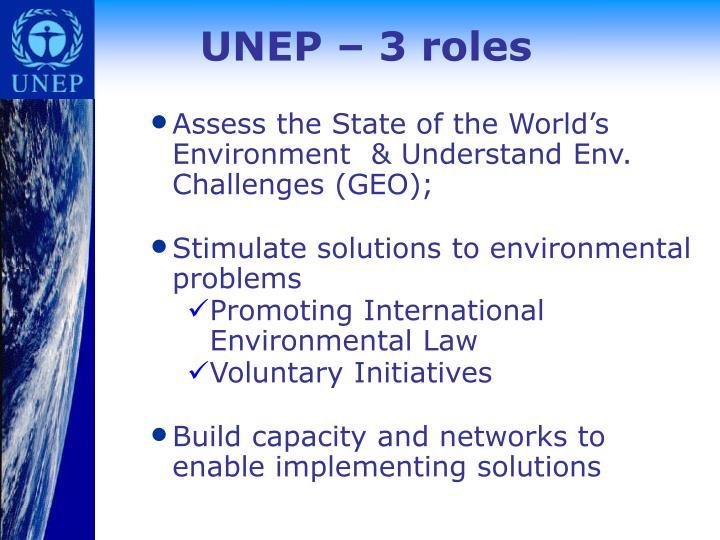 UNEP – 3 roles