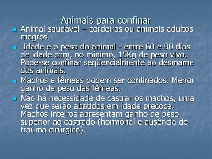 Animais para confinar
