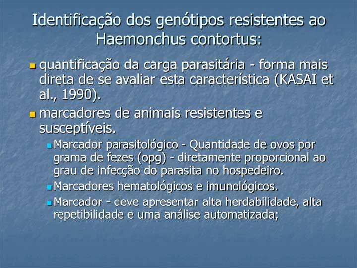 Identificação dos genótipos resistentes ao Haemonchus contortus: