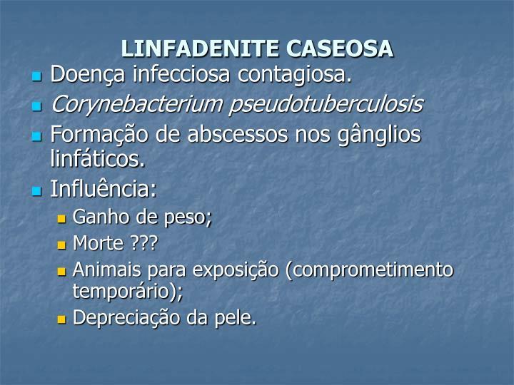 LINFADENITE CASEOSA