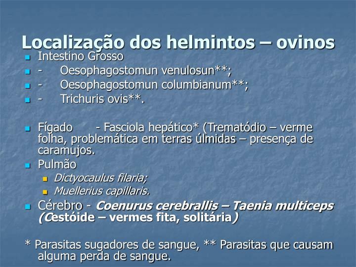 Localização dos helmintos – ovinos