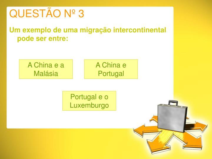 QUESTÃO Nº 3