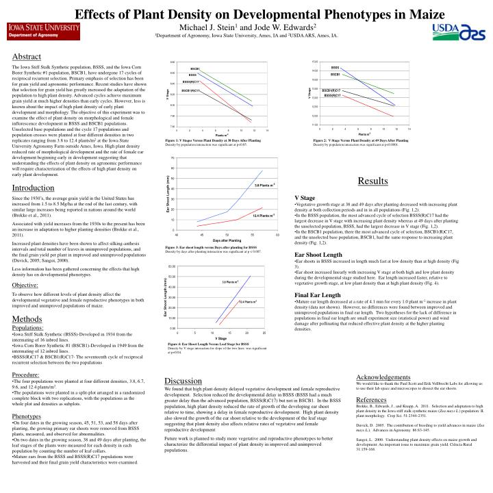 Effects of Plant Density on Developmental Phenotypes in Maize