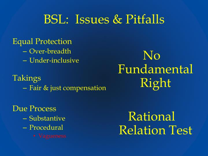 BSL:  Issues & Pitfalls
