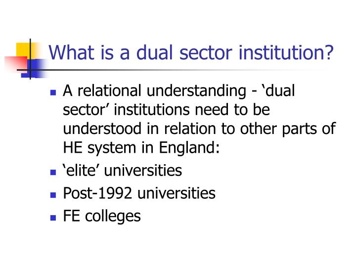 What is a dual sector institution?