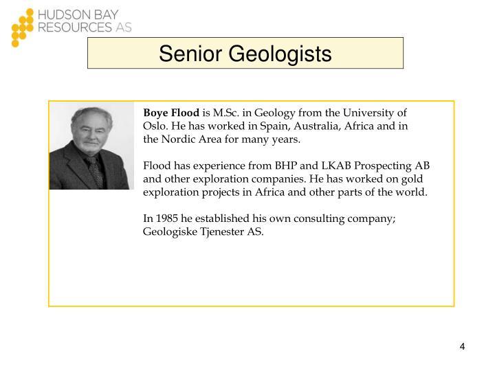 Senior Geologists