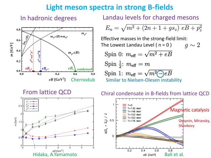 Light meson
