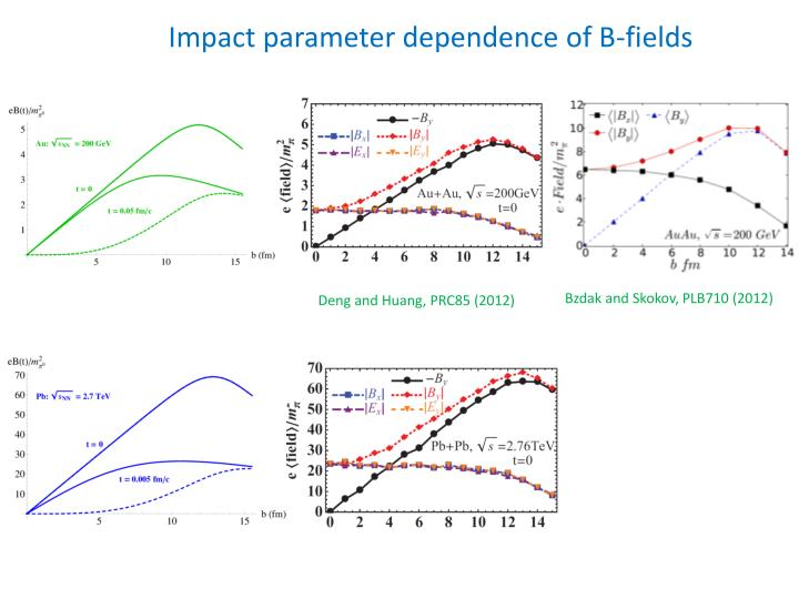 Impact parameter dependence of B-fields