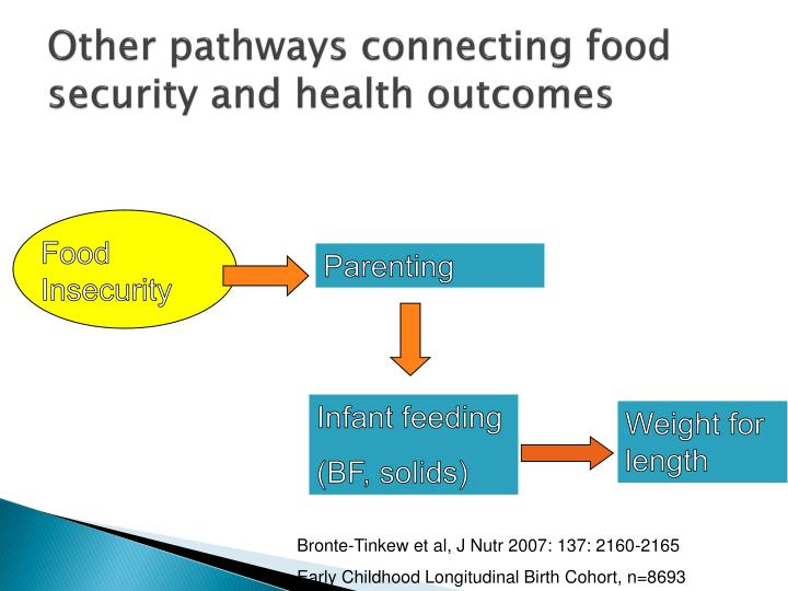 Other pathways connecting food security and health outcomes