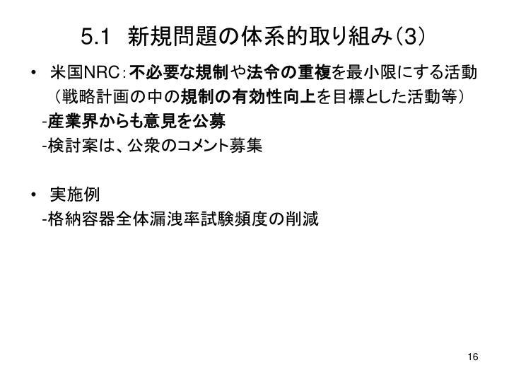 5.1 新規問題の体系的取り組み(3)