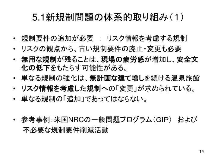 5.1新規制問題の体系的取り組み(1)