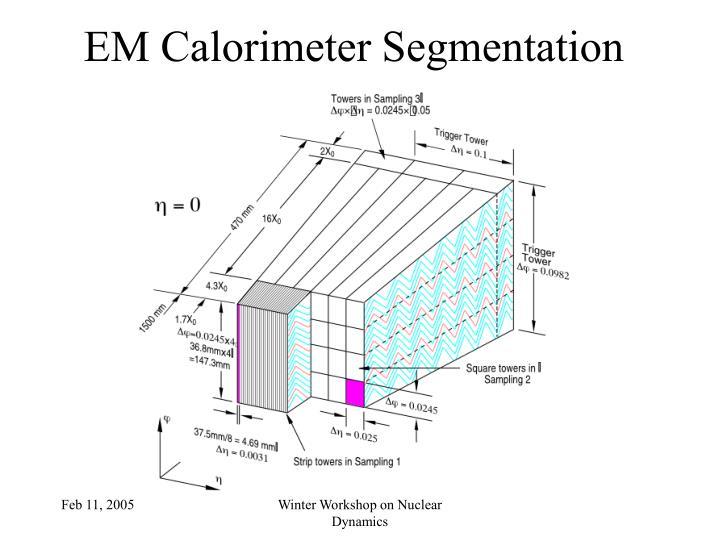 EM Calorimeter Segmentation