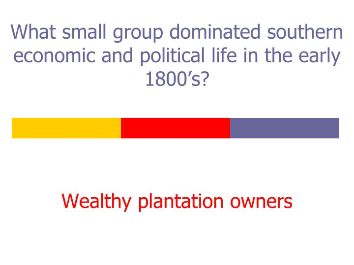 What small group dominated southern economic and political life in the early 1800's?