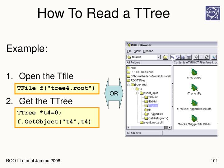 How To Read a TTree