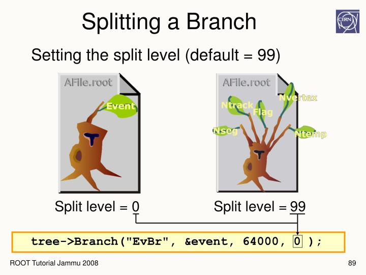 Splitting a Branch