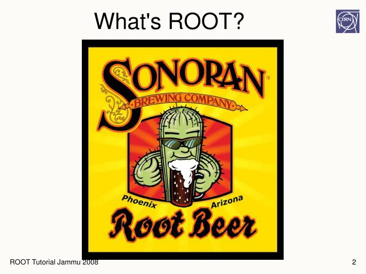What s root