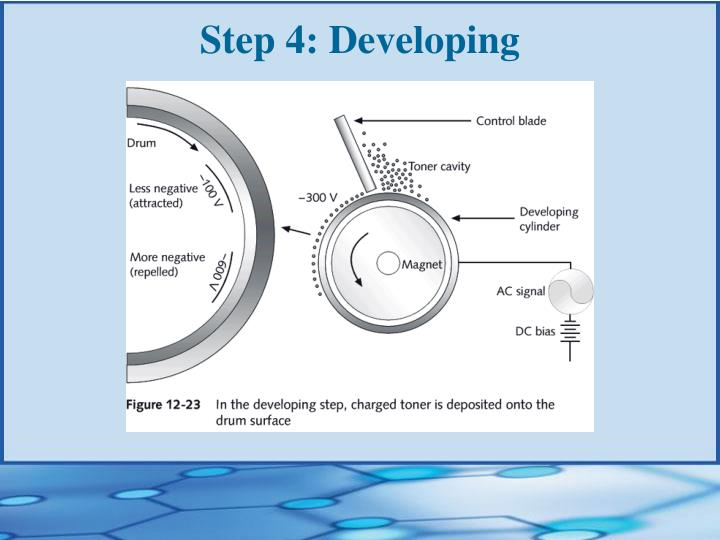 Step 4: Developing