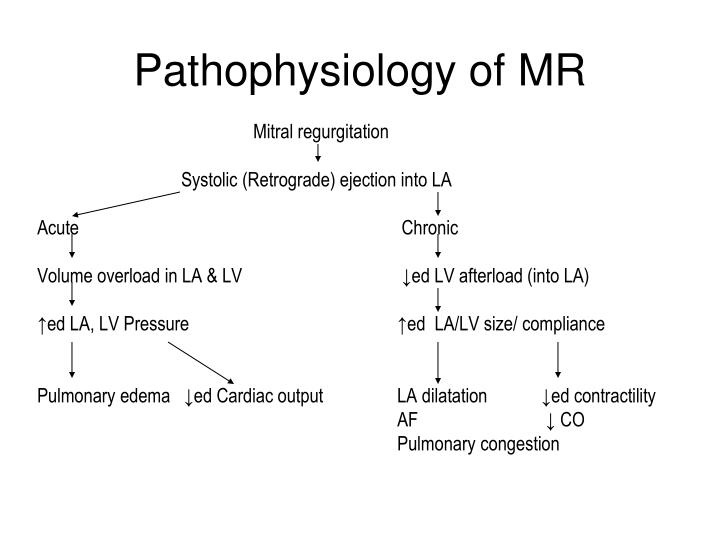 Pathophysiology of MR