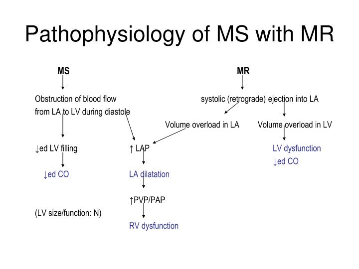 Pathophysiology of MS with MR