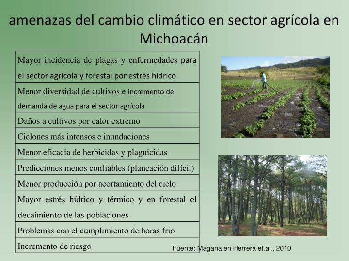 amenazas del cambio climático en sector agrícola en Michoacán