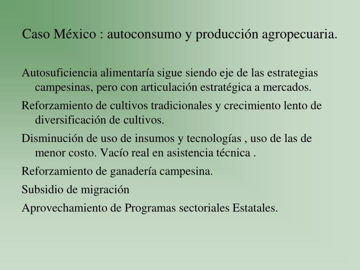 Caso México : autoconsumo y producción agropecuaria.
