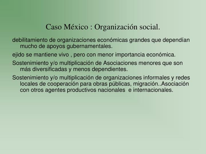 Caso México : Organización social.