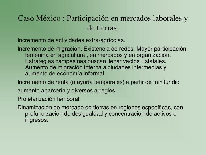 Caso México : Participación en mercados laborales y de tierras.