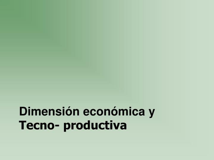 Dimensión económica y