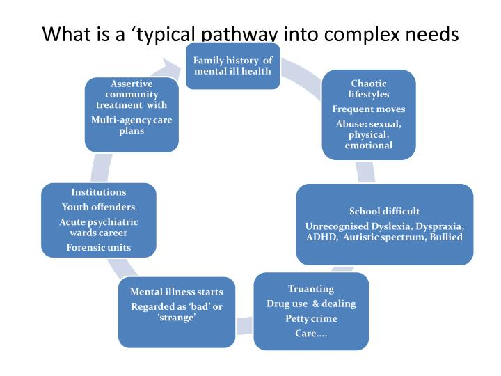 What is a 'typical pathway into complex needs