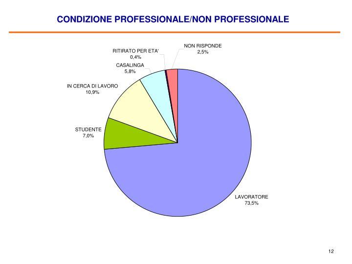 CONDIZIONE PROFESSIONALE/NON PROFESSIONALE