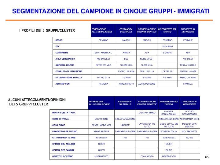 SEGMENTAZIONE DEL CAMPIONE IN CINQUE GRUPPI - IMMIGRATI
