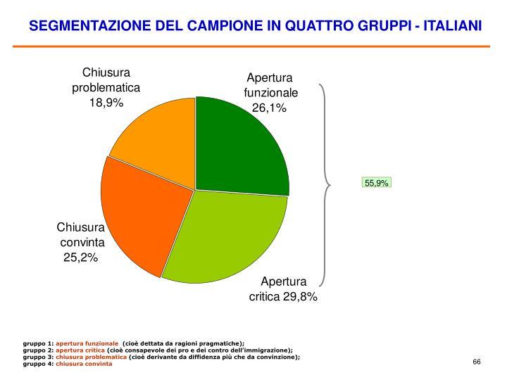 SEGMENTAZIONE DEL CAMPIONE IN QUATTRO GRUPPI - ITALIANI