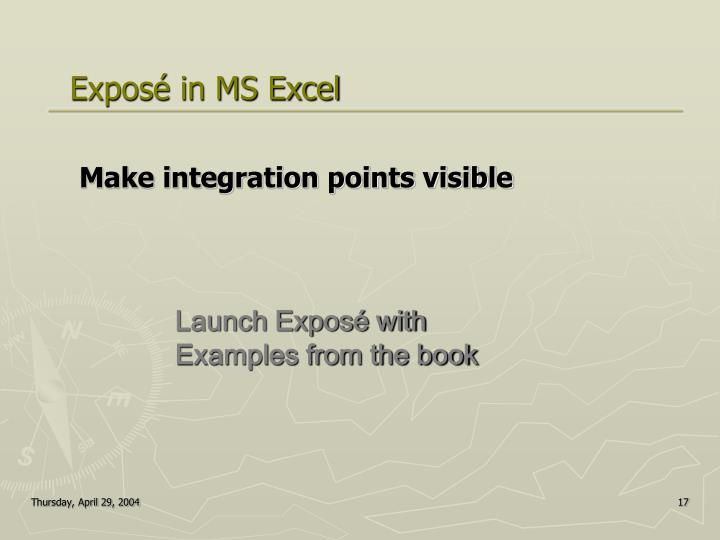 Exposé in MS Excel