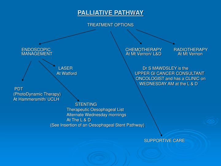 PALLIATIVE PATHWAY