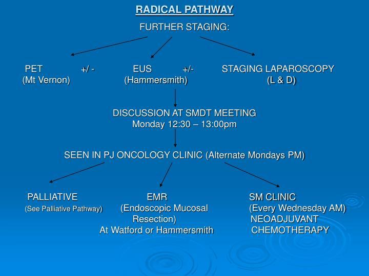 RADICAL PATHWAY