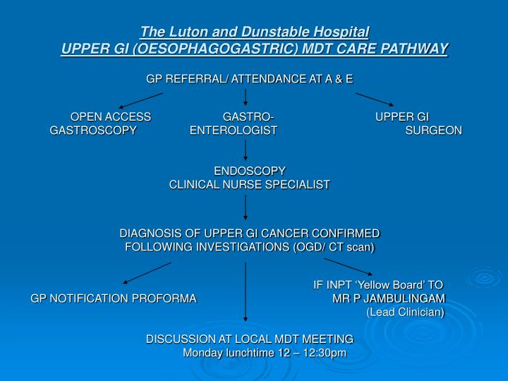 The luton and dunstable hospital upper gi oesophagogastric mdt care pathway