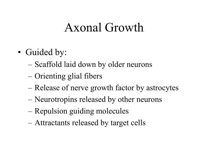 Axonal Growth
