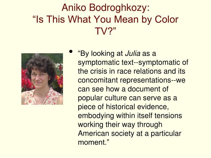 Aniko Bodroghkozy: