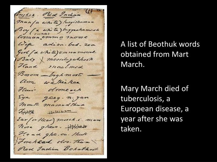 A list of Beothuk words obtained from Mart March.