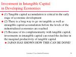 investment in intangible capital in developing economies