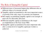 the role of intangible capital