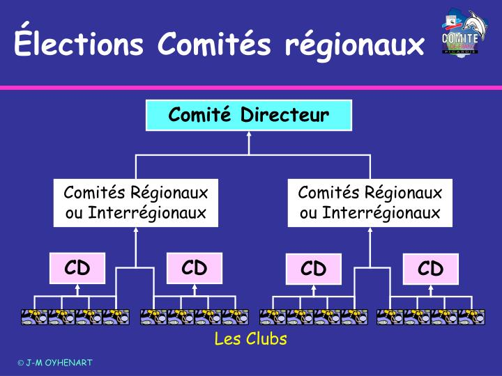 Comités Régionaux ou Interrégionaux