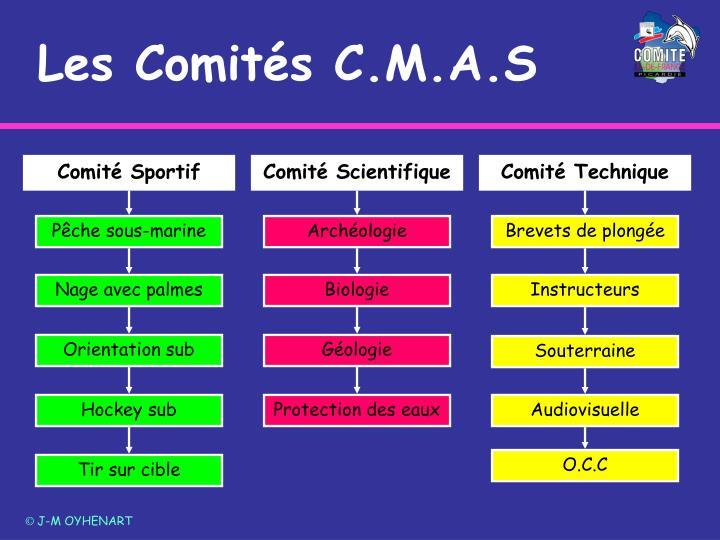Comité Sportif