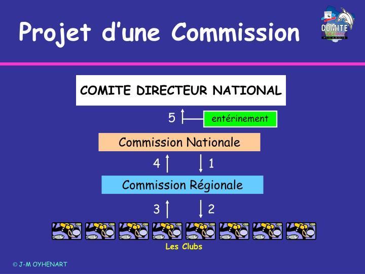 COMITE DIRECTEUR NATIONAL
