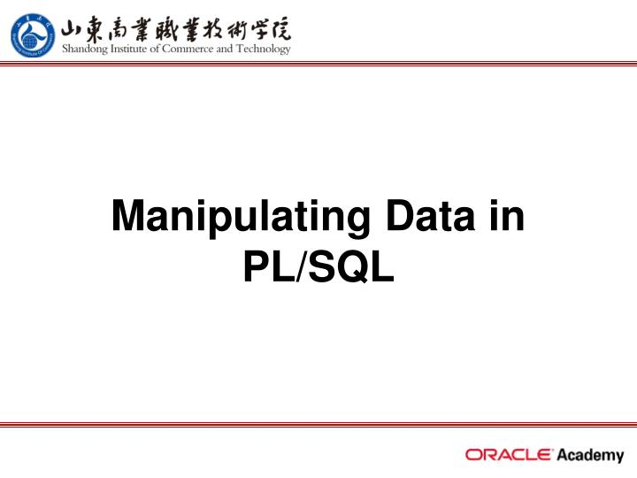 Manipulating data in pl sql