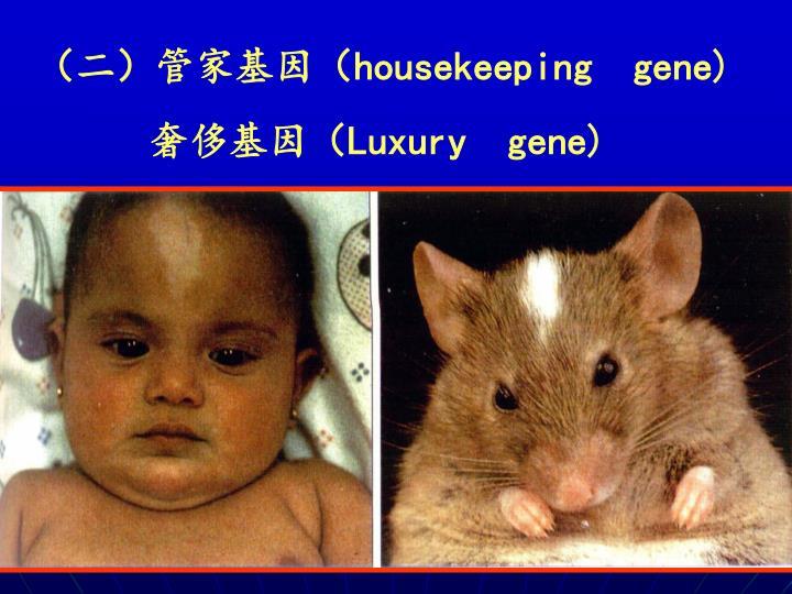 (二)管家基因(