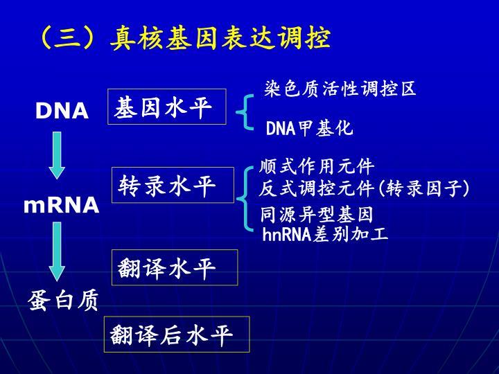 (三)真核基因表达调控