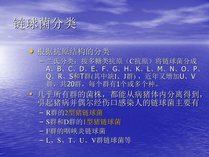 链球菌分类