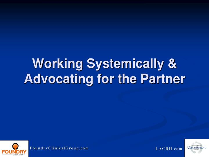 Working Systemically & Advocating for the Partner